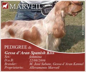 Gessa-Aran-Spanish-Kiss