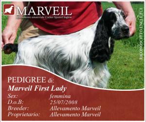 Marveil-First-Lady