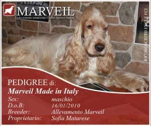 Marveil-Made-in-Italy