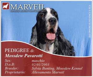 Mossdew-Pavarotti